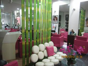 Royal+Orchid+012_convert_20120618035857.jpg