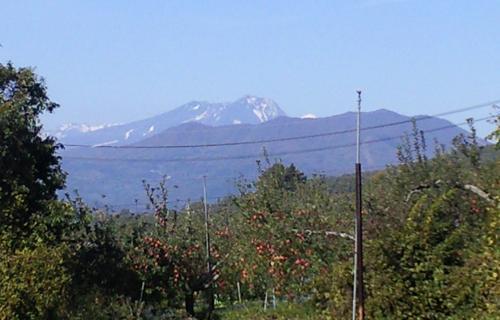雪の妙高山(24.11.4)