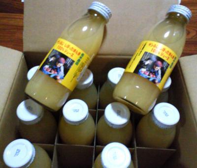 100%リンゴジュース(24.12.5)