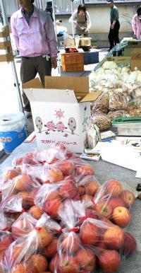 リンゴもきのこも売り切れ(24.4.29)