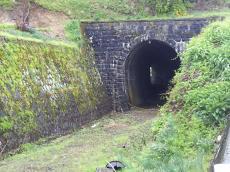 信濃安田駅手前のトンネル(24.5.14)