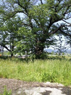 赤岩駅跡(24.6.4)