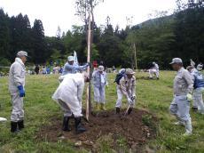 大山桜を植樹(24.6.9)