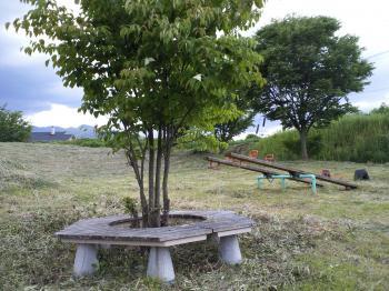 さっぱり! 草刈り後の児童公園(24.6.13)