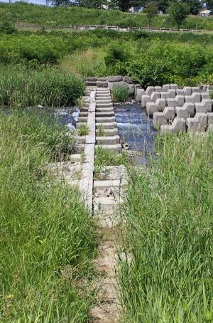 川原橋(千歳橋)(24・6・26)