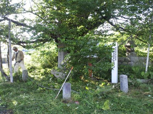 千歳桜まわりの草刈り作業(24.7.3)