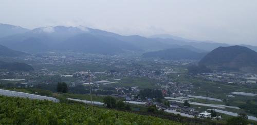 宇木開墾畑から見た山ノ内町(24.7.5)
