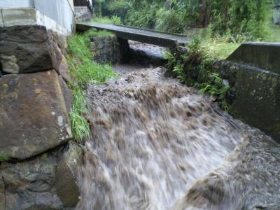 増水する谷地堀(24.9.3)