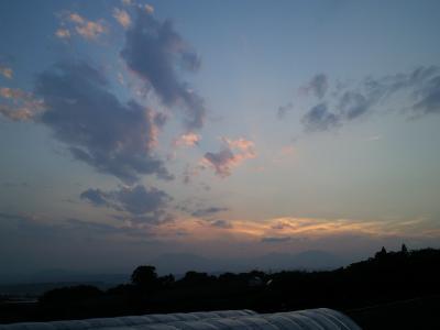 夕方の空にひこうき雲(24.9.5)