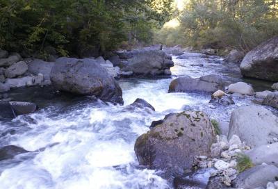 雑魚川の清流(24.10.8)