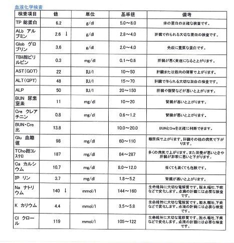 生化学検査 コロ