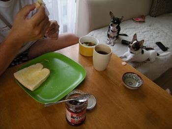 朝だパン1