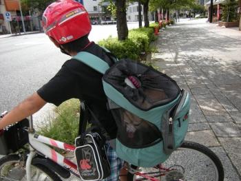 リュックで自転車2