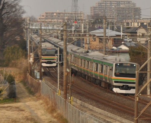DSC_6937.jpg