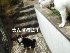 001_convert_20131121190831[1]