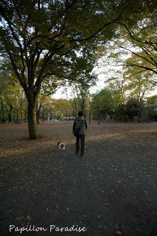 2010112006.jpg