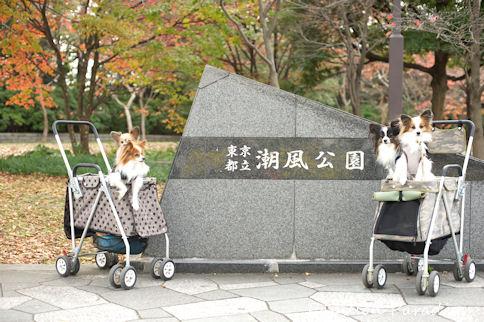 2010112102.jpg