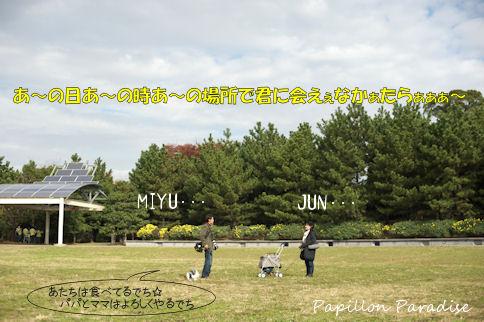 2010112103.jpg