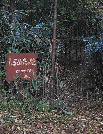 201012_amagi_12.jpg