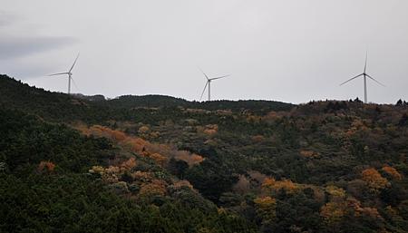 201012_amagi_15.jpg