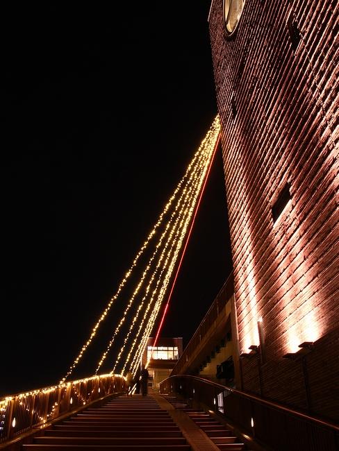 富山富岩運河 夜の天門橋