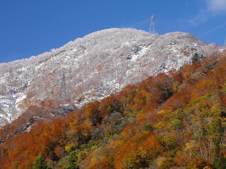 白と錦の五箇山の山