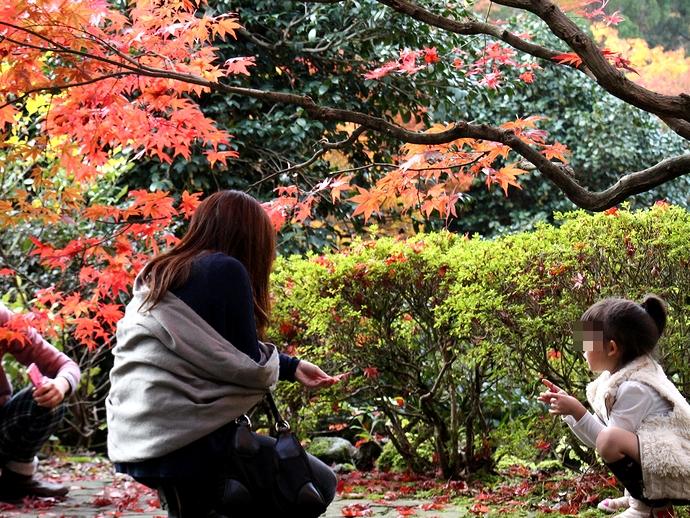 紅葉を楽しむ親子 那谷寺にて