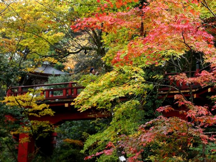 那谷寺の紅葉 庭園のモミジ