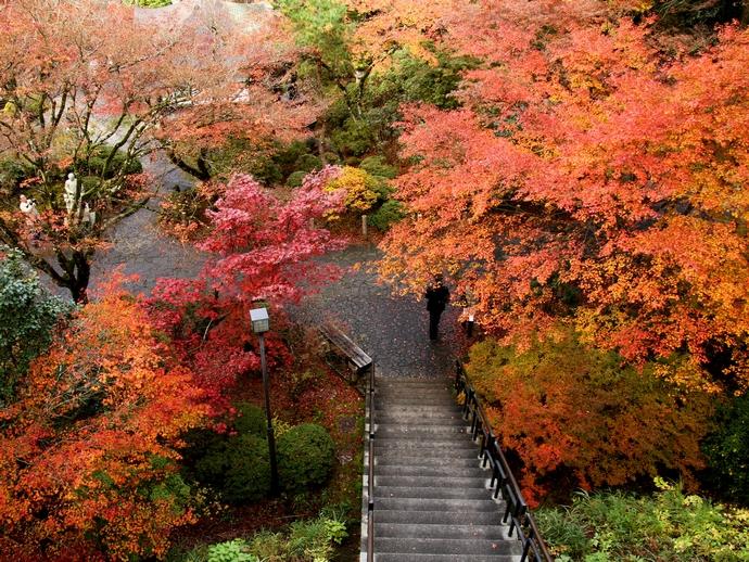 那谷寺の紅葉 展望台より庭園を見下ろす