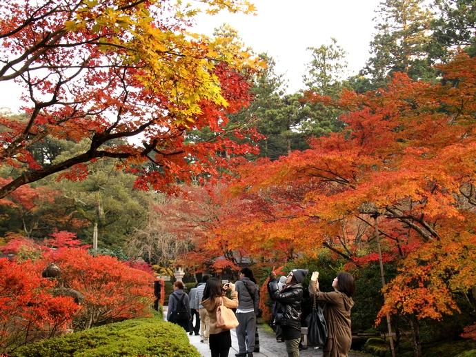 那谷寺の紅葉 参道の様子