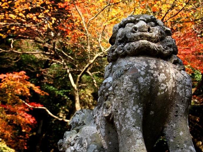 那谷寺の狛犬と紅葉