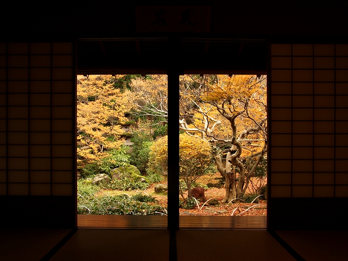 金沢市寺島蔵人邸 座敷から見た庭の紅葉