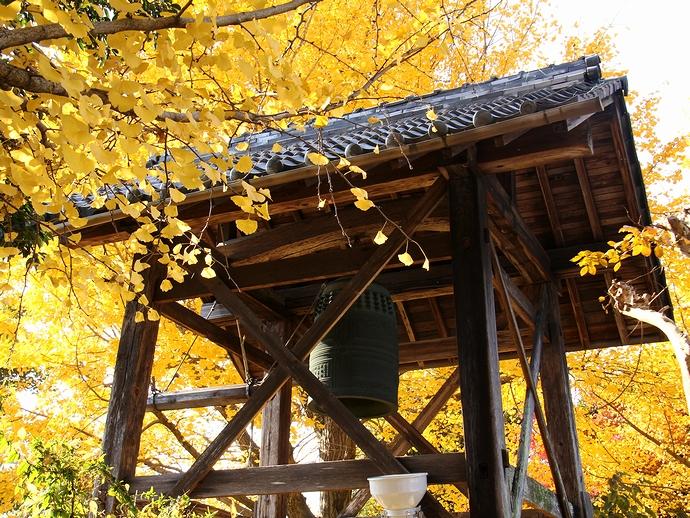 祐専寺の黄葉と鐘楼