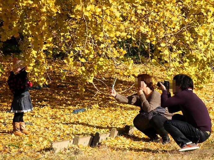 イチョウの黄葉を楽しむ親子連れ