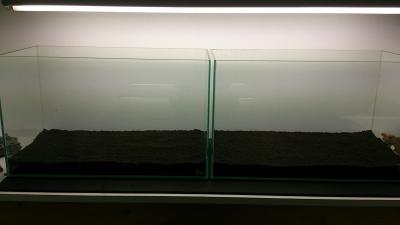 140110-9.jpg