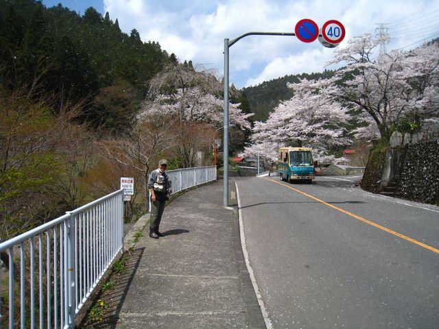2011.4.16養沢 (48)