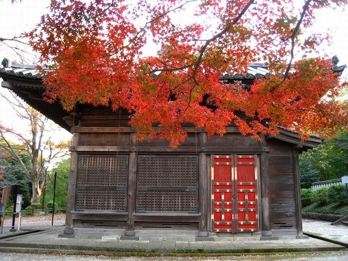 2011.11.23川越散策 (74)
