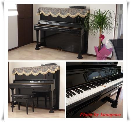 ピアノ移動記念日