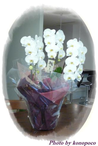 スタッフの皆さんからのお花