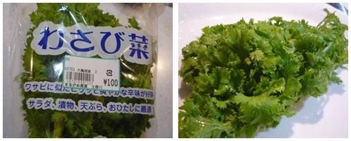 231128わさび菜blog
