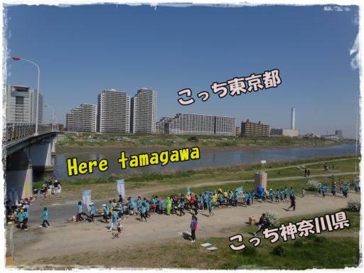 20120408-1.jpg