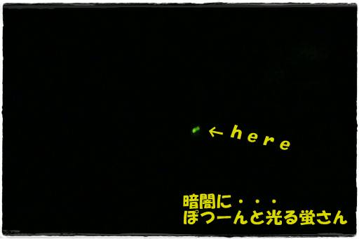 20120702-19.jpg