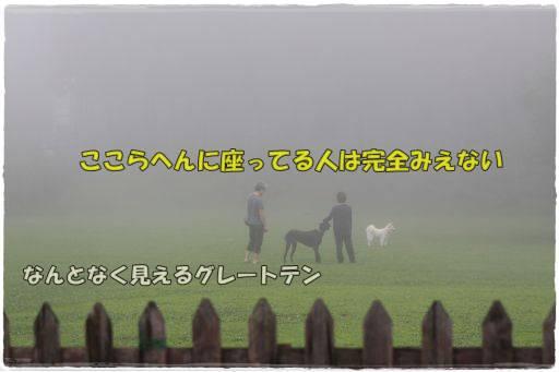 20120718-6.jpg