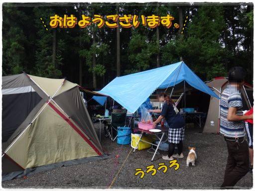 20120820-1.jpg