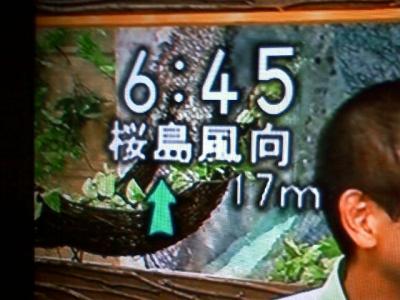桜島風向予想