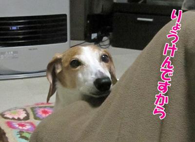 ryou1.jpg