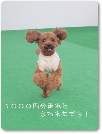 10 08 01_0650