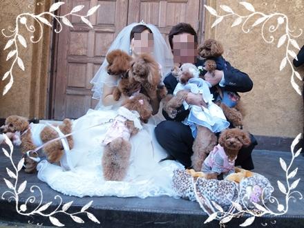 フーちゃんママ結婚式_0078