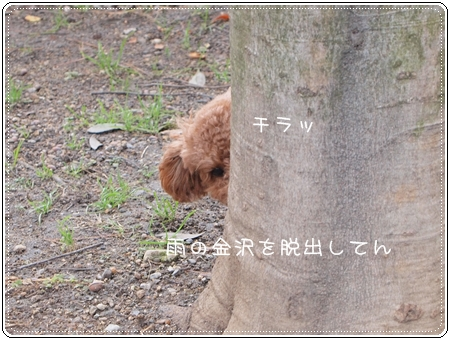 2012 01 15_4101