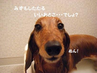 なんちゅー顔>m<
